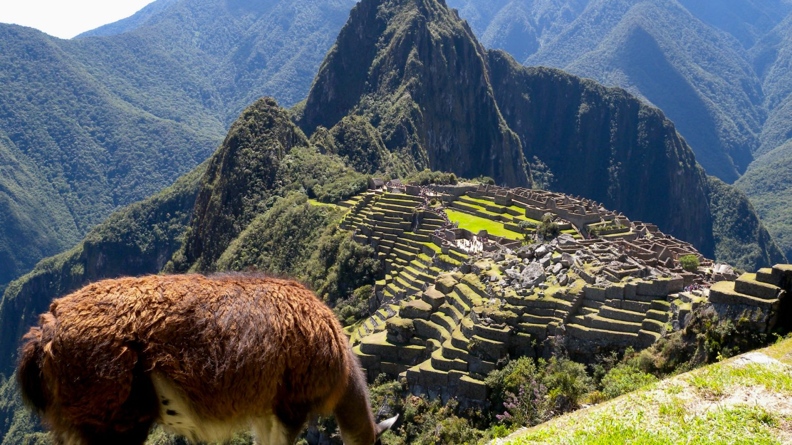 BEST PICTURE OF MACHU PICCHU BY INKA TRAIL TREK