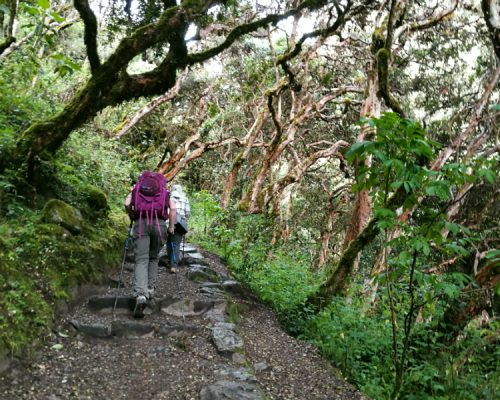classic inca trail peru by inka trail trek