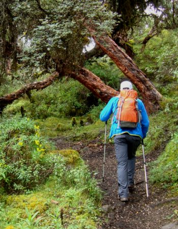 Yanacocha Trek Cusco by inka trail trek