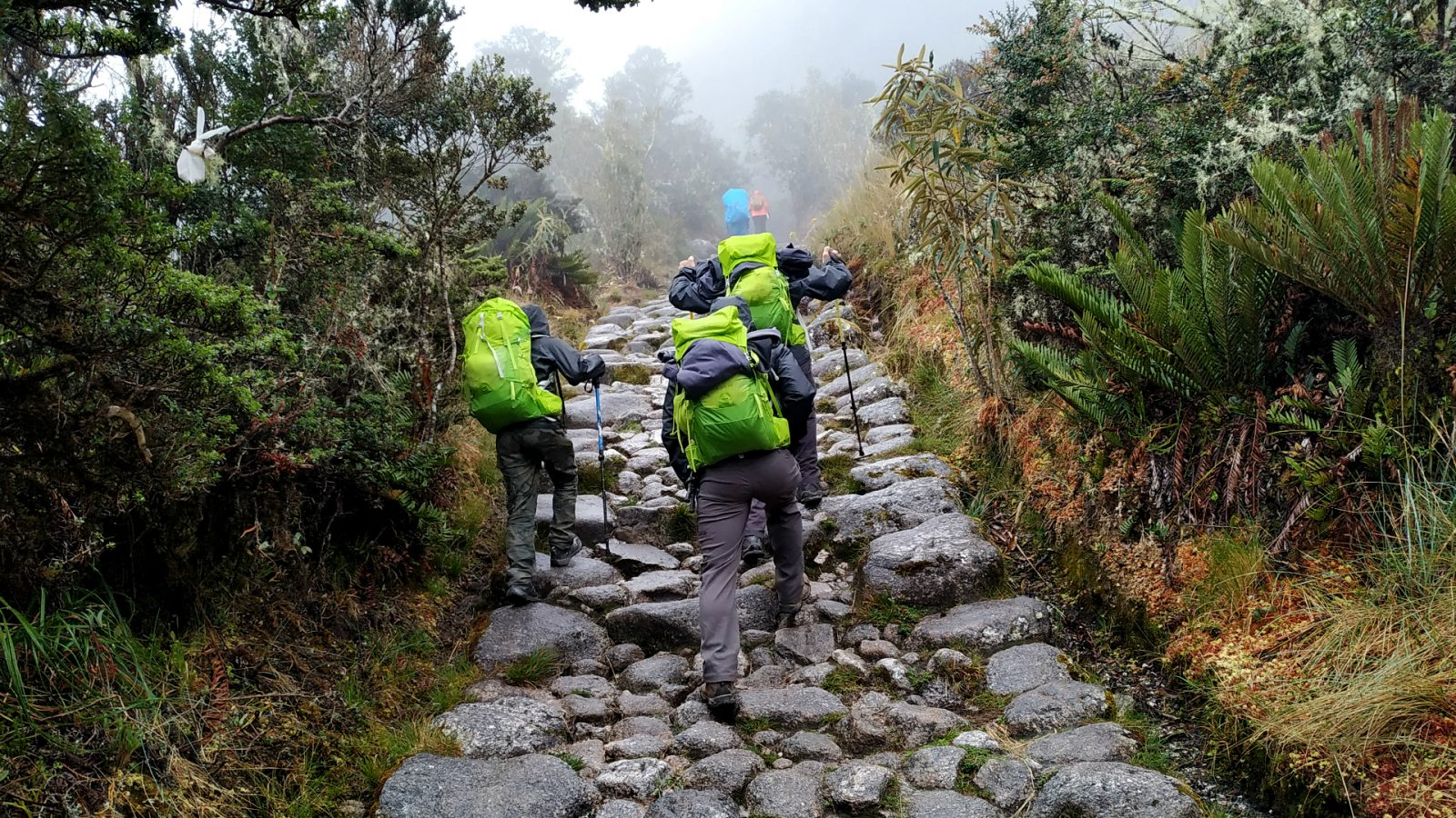 inka trail trek day 3